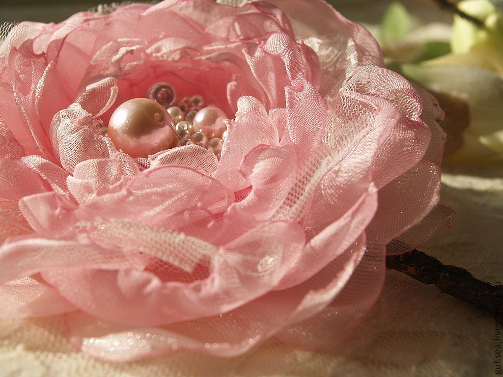 Цветы курган розы